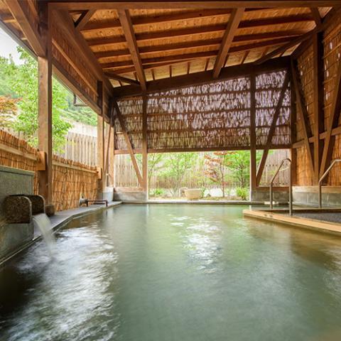 Sakunami Onsen Katakuri no Yado